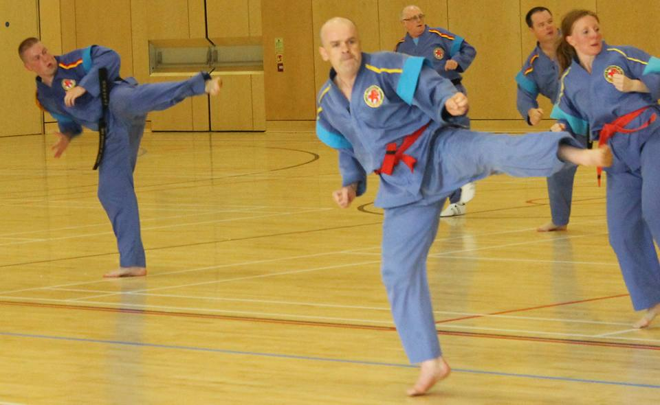 Andrew taking part in the Tukido seminar 2017