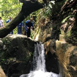 Students enjoy a jungle walk near Taiping